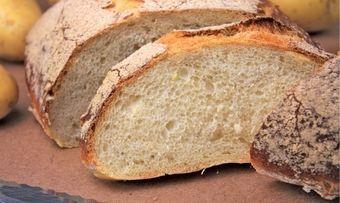 Kartoffel-Bier-Brot