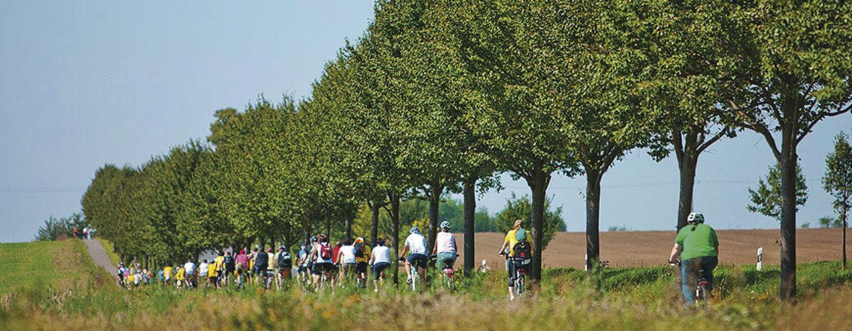 """Impressionen von vorangegangenen Touren belegen: Die """"Tour de Frömmschdt"""" ist ein Spaß für die Familie."""