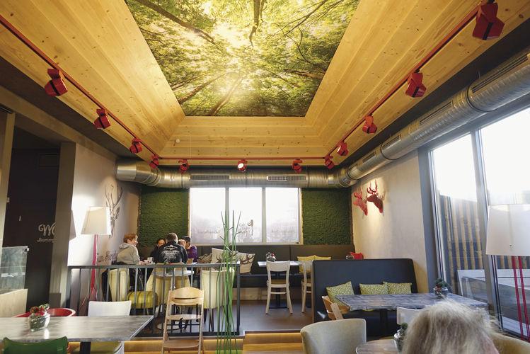 Die abgestufte Decke mit Holzrahmen und dem Blick in die Baumwipfel lässt den Raum größer erscheinen.