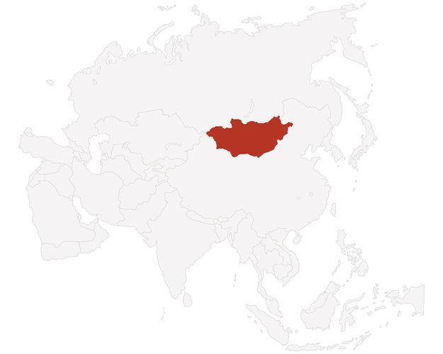 Detmolder Teigführung für die Mongolei