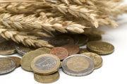 Schlechte Ernte - höhere Preise? Experten sind unterischiedlicher Meinung, was die Entswicklung der Lebensmittelpreise angeht.