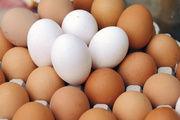 Durch den Ausfall von Importen sind Hühnereier mittlerweile zum knappen Gut geworden.