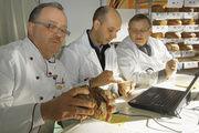 Brotqualitäten auf dem Prüfstand (von links): Obermeister Werner Klink-müller, Fachschullehrer Marian Kalliske und Bäckermeister Klaus Merschank.