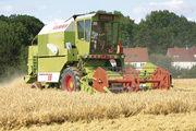 Der Bauernverband spricht von einem ordentlichen Ernteergebnis.