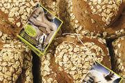 Die Brote stechen durch den speziellen Herzstempel sofort ins Auge.