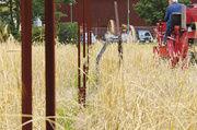 Das Saatgut für das Friedensbrot soll im ehemaligen Todesstreifen angebaut werden.