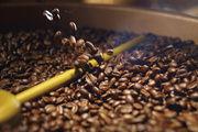 Pro Person konsumieren die Deutschen mehr Kaffee als die Italiener oder die Franzosen.