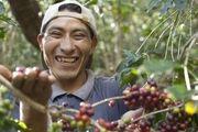 Kaffeebauer Ruben aus Peru freut sich, dass er für die Ernte der Kaffeebohnen ordentlich entlohnt wird.