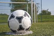 Der ideale Chef ist wie der Fußballtrainer: Nicht er schießt die Tore, sondern formt das erfolgreiche Team.