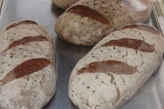 Die Großbäckerei Stauffenberg stellt wieder Brot und Brötchen her, nach der Insolvenz nun aber mit deutlich weniger Personal.