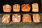 Verschiedene Brote, hergestellt mit der neuen Sauerteigpaste.