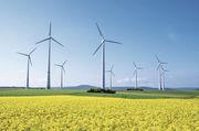 Die Kosten für den weiteren Ausbau von alternativen Energiequellen sollen noch zunehmen.
