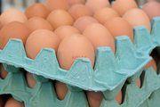 Bonn (abz). Am Eiermarkt in Deutschland und in der EU steigen die Preise weiterhin aufgrund des knappen Angebots. Grund sei der Fipronil-Skandal, in dessen Folge nicht nur Millionen Eier vernichtet, sondern auch Millionen von Hennen gekeult wurden. Nach A