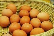 Wieder sind Hühnereier mit dem Insektizid Fipronil in den Handel gekommen.