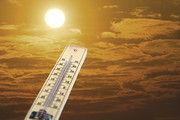 Hitzerekorde sind nicht gerade das ideale Wetter für Konditoreiprodukte.