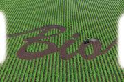 Die Bedeutung von Produkten, die auf ökologischer Landwirtschaft basieren, wächst.