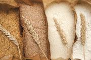 Die Weizensorte entscheidet mit über den Acrylamidgehalt im Brot.