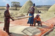 Teff (Foto links Körner und daraus gewonnenes Mehl) wird vorzugsweise im Hochland von Äthiopien angebaut.
