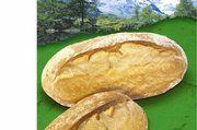 Dia Pasten-Weizenvorteig sorgt für mehr Geschmack und Qualität.