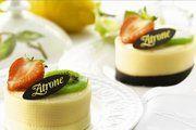 Die Zitronentörtchen werden mit feiner Buttercreme gefüllt.