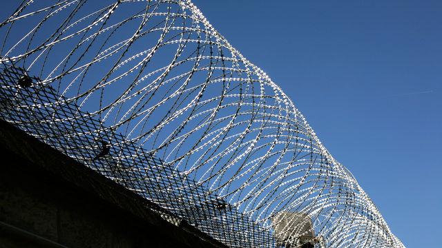 Frank Ostendorf und seine Kollegen sind zu Gefängnisstrafen verurteilt worde.  (Quelle: Rainer Sturm/Pixelio.de)