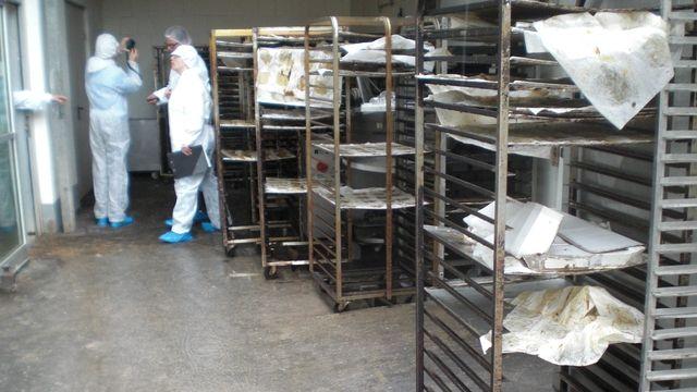 Die Kontrolleure haben in der Produktion der Frankfurter Bäckerei keine Mühe, hygienisch untragbare Zustände zu finden.    (Quelle: Ordnungsamt)