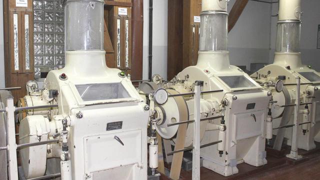 Die Walzenstühle zermahlen das Roggengetreide bei der Flachmüllerei in einem Arbeitsgang zur gewünschten Mehlsorte. (Quelle: Kräling)