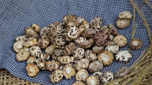 Shiitake-Pilze enthalten zwar das Vitamin B12, jedoch können die meisten Menschen nicht genügend von dem Vitamin aus ihnen aufnehmen. (Quelle: pixabay)