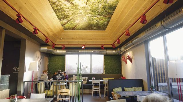 Die abgestufte Decke mit Holzrahmen und dem Blick in die Baumwipfel lässt den Raum größer erscheinen. (Quelle: Hart)