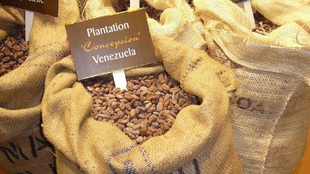 Die Initiative strebt einen fairen und nachhaltigen Handel mit Kakaobohnen an. (Quelle: Archiv)