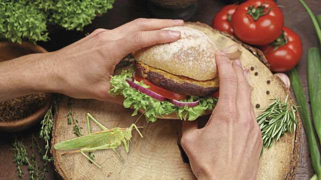 In der Schweiz werden Heuschrecken bereits für Burger verarbeitet. (Quelle: Bugfoundation/Fotolia, Montage: Gugel)