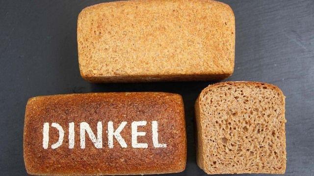 Kennzeichen: Dinkelbrot mit feinporigem bis kernigem Krumenbild. (Quelle: Brotinstitut)