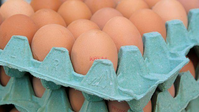 Eier sind derzeit am europäischen wie auch dem deutschen Eiermarkt ein rares Gut. (Quelle: Pixabay.com/ jackmac34)