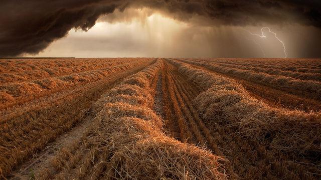 """""""Erntezeit"""" hat Fotograf Franz Schumacher aus Deutschland diese Bild genannt. (Quelle: Franz Schumacher)"""