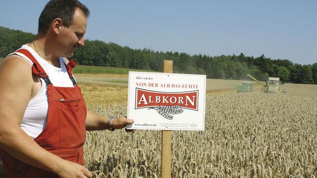 Regionalität sichtbar gemacht: Das Getreide vom Feld dieses Landwirts verarbeiten Bäcker im Umkreis von 50 Kilometern. (Quelle: Schindler)
