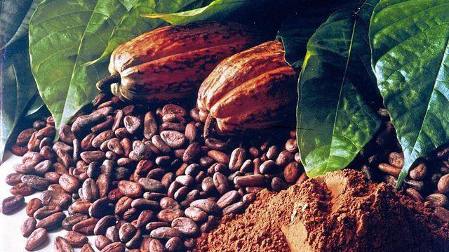 Wird sich mit Berlin der Durchbruch für einen nachhaltigen Kakaosektor verbinden?   (Quelle: Archiv/Infozentrum Schokolade)