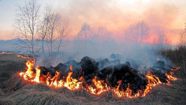Durch Funken können schnell Flächenbrände entstehen. (Quelle: Pixabay.com/Natalia_Kollegova)