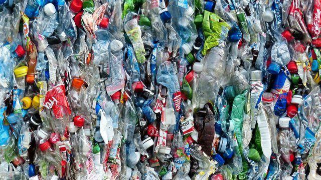 Die Systemgastronomen wollen helfen Plastikmüll zu reduzieren. (Quelle: pixabay.com/ Hans)