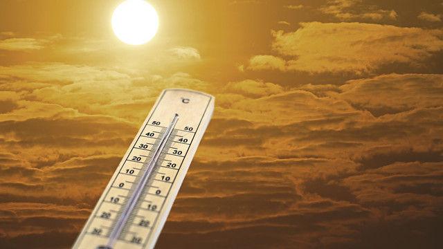 Hitzerekorde sind nicht gerade das ideale Wetter für Konditoreiprodukte. (Quelle: Shutterstock/worawut2524)