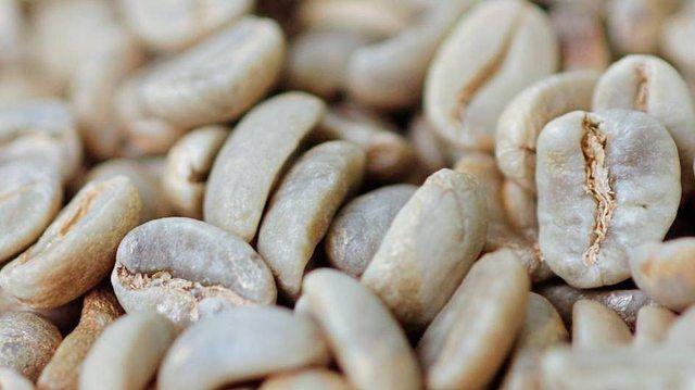 Kaffeehäutchen werden zu Pellets. (Quelle: Archiv)