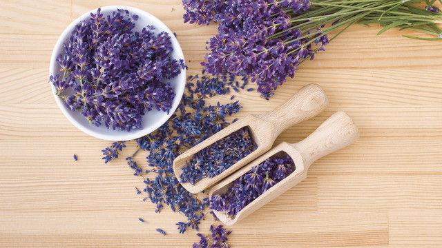 Lavendel kann zur Verfeinerung von Back- und Feinbackwaren verwendet werden. (Quelle: Shutterstock/Cora Mueller)