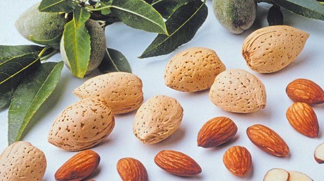 Mandeln sind der Hauptrohstoff bei der Marzipanherstellung. (Quelle: Archiv)