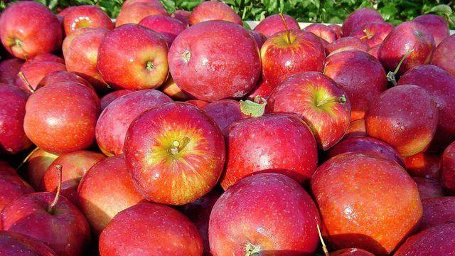 Äpfel vom regionalen Bauer sind mehr gefragt als Bio. (Quelle: pixabay.com/ Fruchthandel_Magazin)