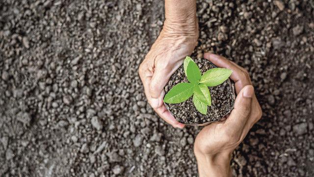 Verbände fordern Ernährung als Wertschöpfung. (Quelle: Shutterstock/kram9)