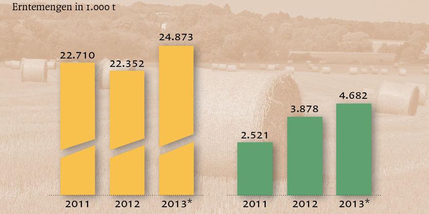Eine reiche Ernte konnten die Bauern in diesem Jahr einfahren.