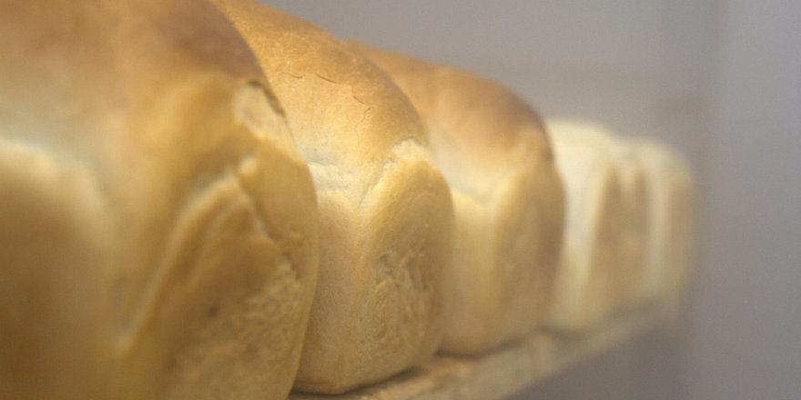 Auf dem Programm stehen praktische Präsentationen moderner Anlagen sowie Verfahren zur Brot-Produktion.