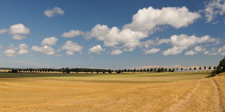 Die Getreidefelder sind abgeerntet.