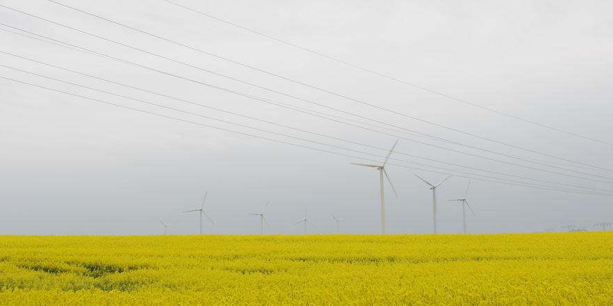 Windkraft- und Biogasanlagen, die über die EEG-Umlage mit finanziert werden, belasten mittelständische Bäckereien sehr.