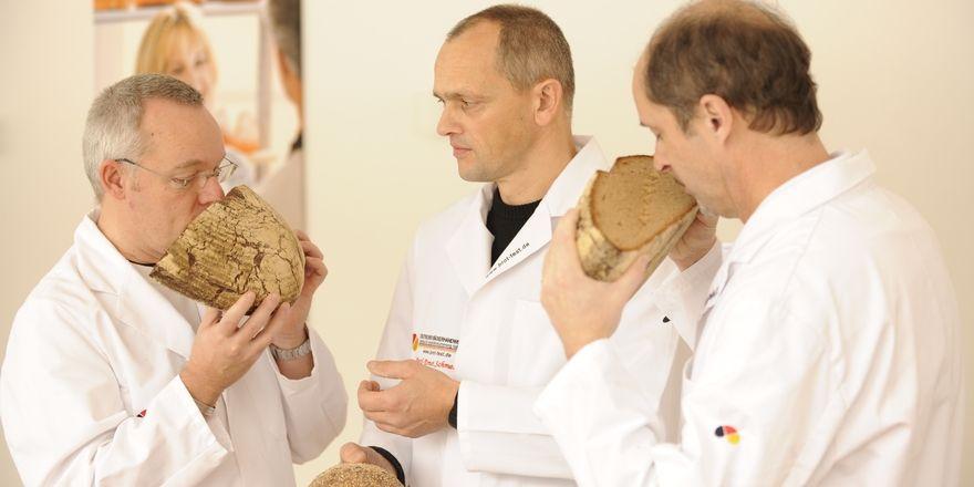 Die hauptamtlichen Sachverständigen des IQBack Michael Isensee (von links), Karl-Ernst Schmalz und Manfred Stiefel hatten alle Hände voll zu tun.