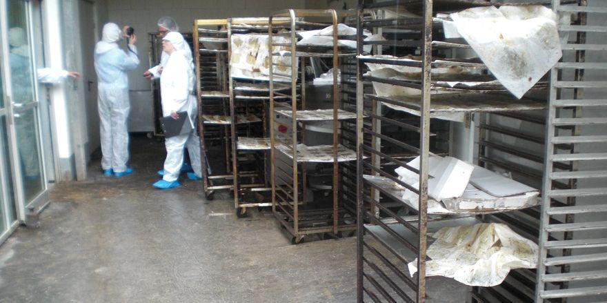 Die Kontrolleure haben in der Produktion der Frankfurter Bäckerei keine Mühe, hygienisch untragbare Zustände zu finden.